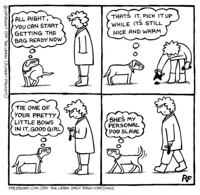off the leash: the secret life of dogs, poo slave cartoon