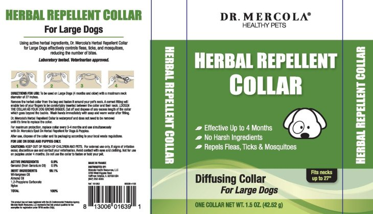 Large Dog collar box_v102_webOL