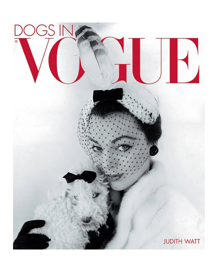 dogs-in-vogue-judith-watt-ultimate-fashion-dog-photography-perfect-christmas-presents-for-dog-lovers-gift-guide-perfect-cocker-spaniel-blog