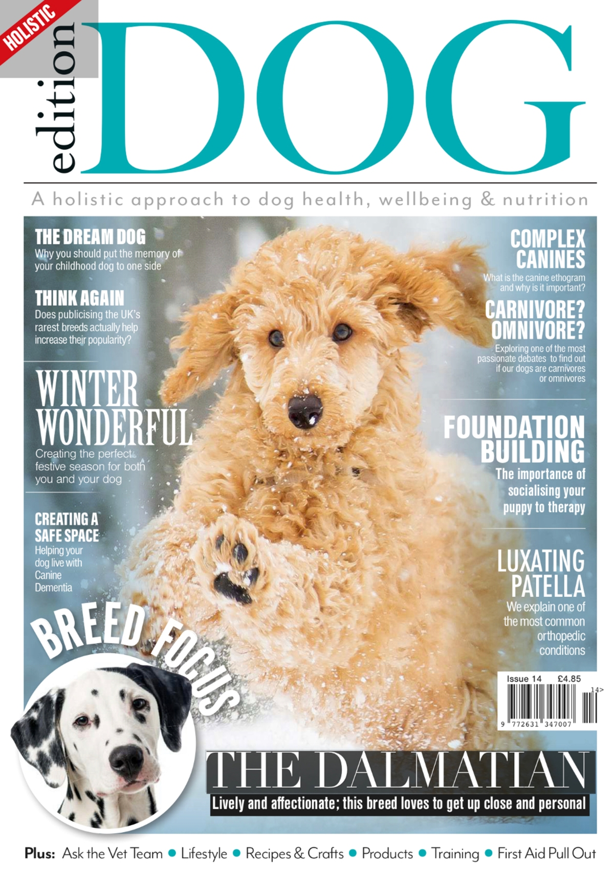 Perfect cocker spaniel book featured in Edition Dog magazine / dog and puppy tips, advice, cocker spaniel grooming, diet, health / dog blog (C) Natalia Ashton