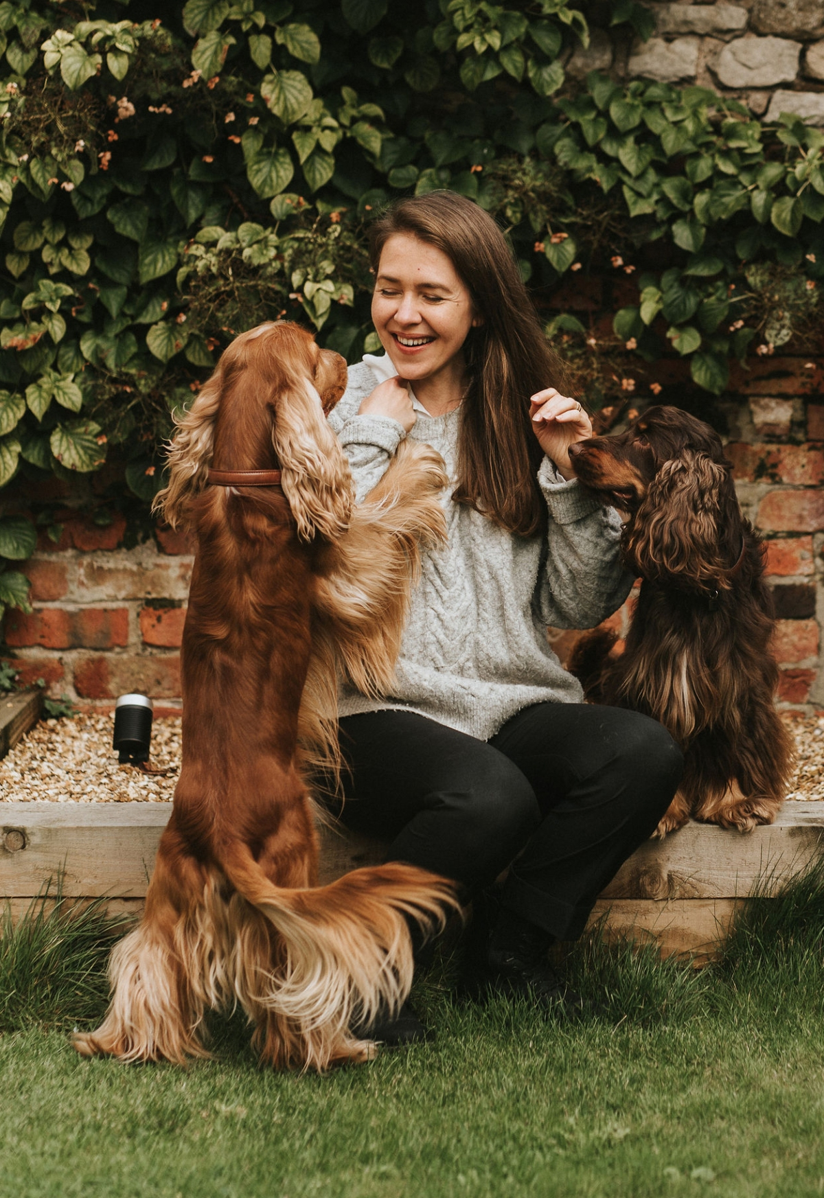 5 tips, rules, resolution and ideas for better relationship with your english cocker spaniel / learn to understand & train your dog / walking tips with cocker spaniel / Perfect cocker spaniel book and pet blog / Natalia Ashton, Cooper, sable cocker spaniel & Fred, chocolate and tan cocker spaniel / (C)