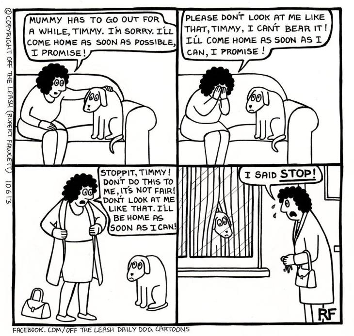 What is separation anxiety in dogs? How to prevent separation anxiety in english cocker spaniels? Mummy will be back soon cartoon by Off The Leash (C)
